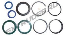 Seal kit of the hydraulic cylinder Liseс 0007481