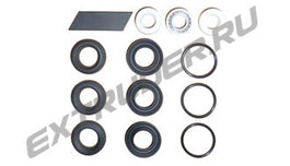 TSI 2000-0209-1001T. Sealing set for the B-metering pump