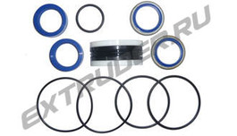 Seal kit of the hydraulic cylinder TSI 2000-0213-1001